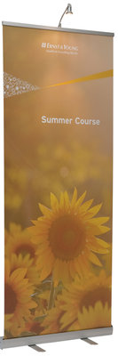 Roll Up Banner Budget 80x200
