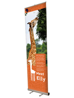 Roll-Up banner 100x300